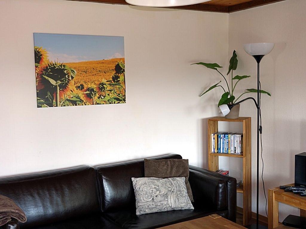 Auswahl an CD's, DVD's, Wii-Spiele und Büchern im Wohnzimmer Haus Mohnblume Haus 93 im Feriendorf Öfingen